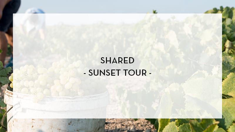 1shared SUNSET